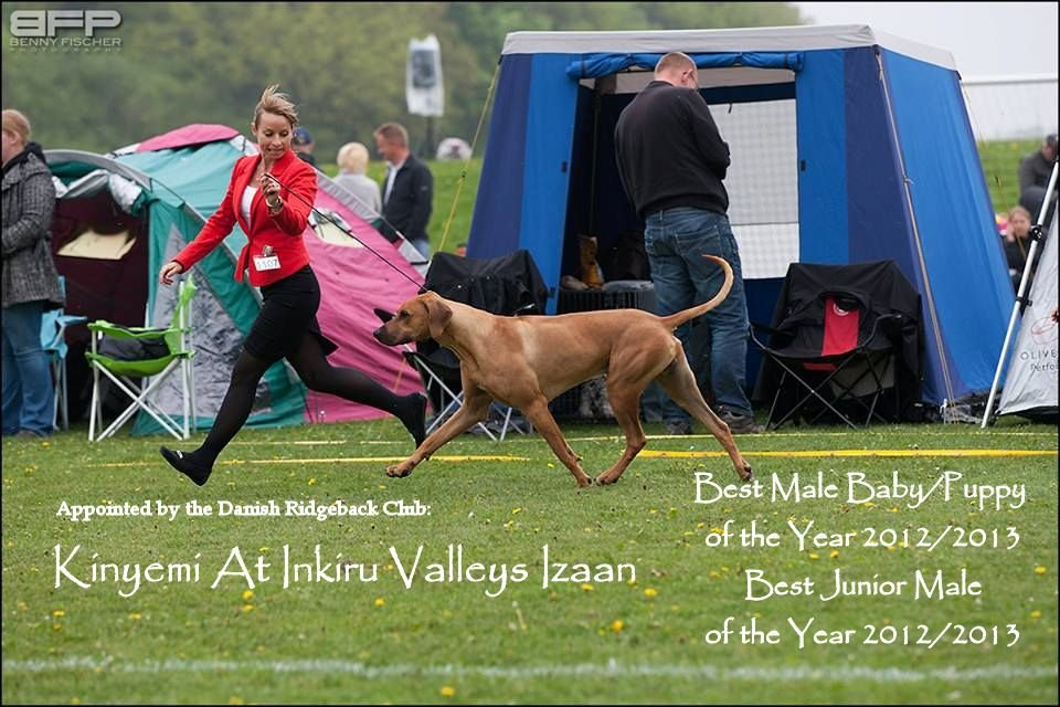 Izaan best junior male of the year
